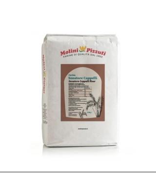 HARD WHEAT SEMOLINA FLOUR - MOLINI PIZZUTI