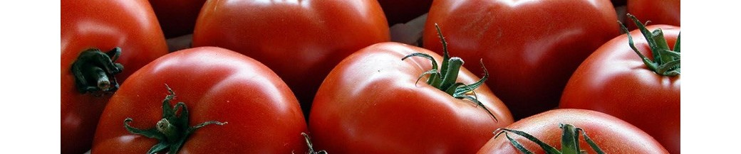 Tomatoes&Tomato Sauces